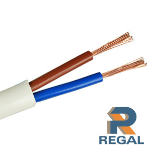 2 core sheathed cable